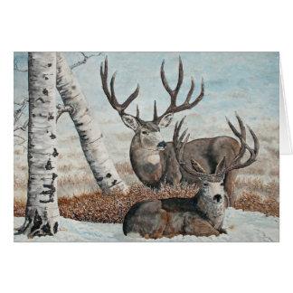 Snowy ridge bucks card