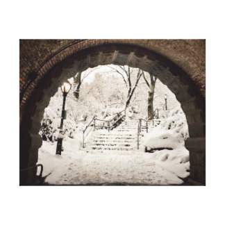 Snowy Shelter in Central Park Canvas Print