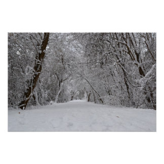 Snowy Trail Poster
