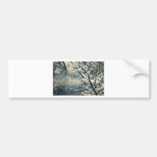 Snowy Tree Mouse Pad Bumper Sticker