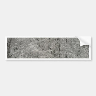 Snowy Trees Bumper Sticker