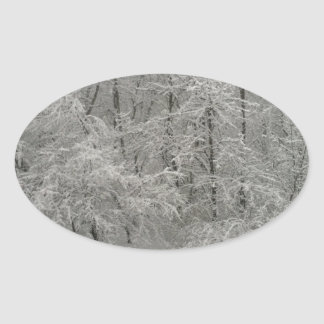 Snowy Trees Oval Sticker