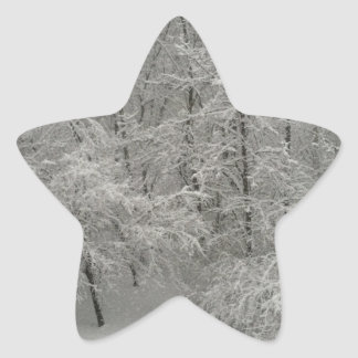 Snowy Trees Star Sticker