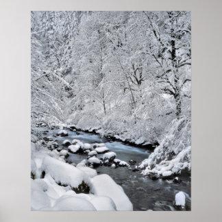 Snowy white creek scenic, Oregon Poster