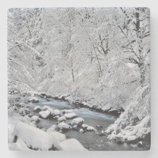 Snowy white creek scenic, Oregon Stone Beverage Coaster