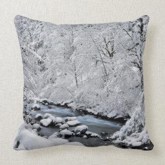 Snowy white creek scenic, Oregon Throw Pillow
