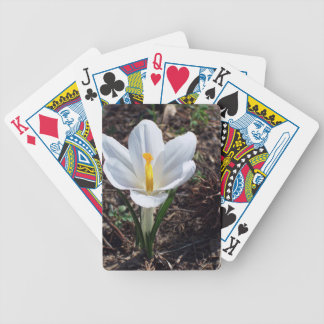 Snowy White Crocus Blossom Bicycle Playing Cards