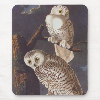 Snowy White Owls on a Dark Scary Night by Audubon Mouse Pad