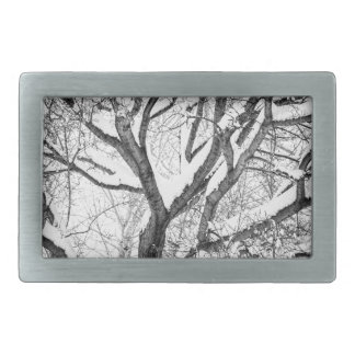 Snowy Winter Intertwine Belt Buckles