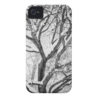 Snowy Winter Intertwine iPhone 4 Cases