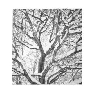 Snowy Winter Intertwine Notepad