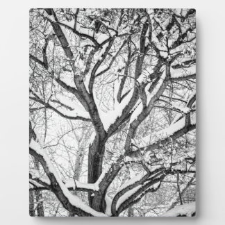 Snowy Winter Intertwine Plaque