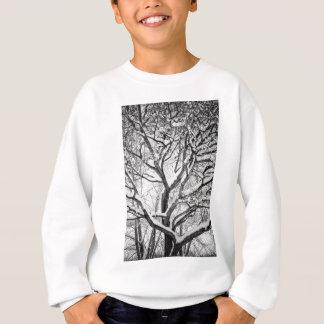Snowy Winter Intertwine Sweatshirt