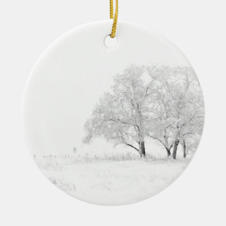 Snowy Winter Landscape Photography Ceramic Ornament