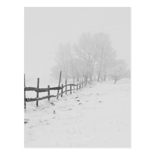 Snowy Winter Landscape Photography Postcard