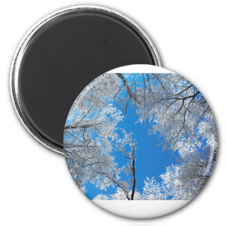 Snowy Winter Scene Magnet
