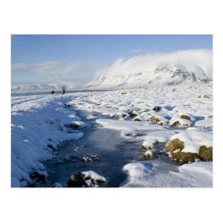Snowy Winterland Postcard