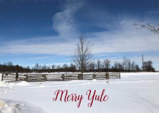 Snowy Yule Holiday Card