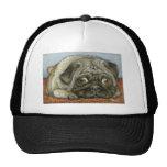 Snug Pug Hat