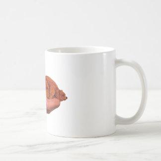 Snuggle Bear Coffee Mug
