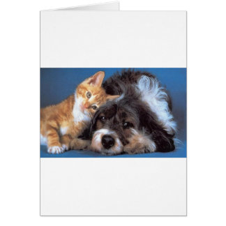 Snuggle Buddies Card