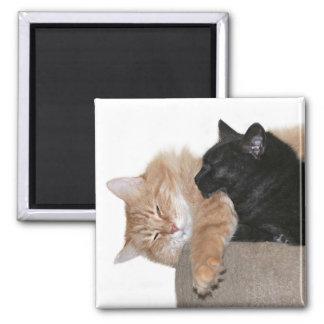 Snuggle buddies magnet