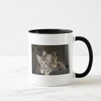 Snuggle Mug
