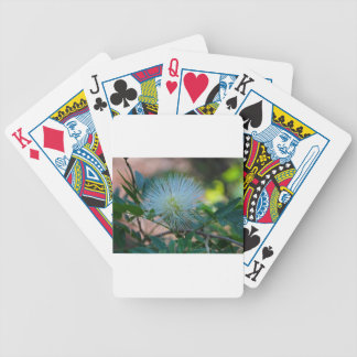 So This Is Love Bicycle Playing Cards