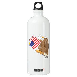 Soar Eagle