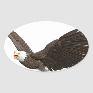 Soaring Bald Eagle Oval Sticker