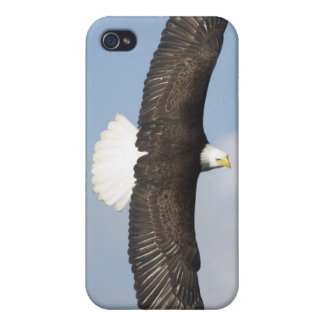 Soaring Bald Eagle Wildlife Supporter iPhone Cases