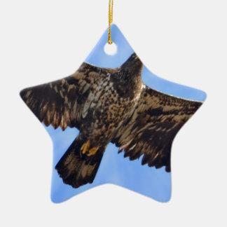 Soaring Eagle Ceramic Star Ornament