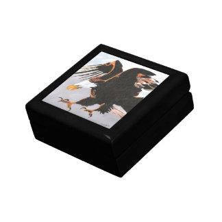 Soaring Eagle Gift Boxes