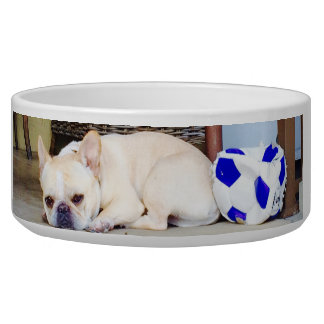 Soccer Ball Dog Bowl