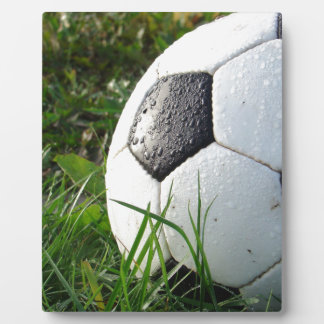 Soccer~ Foot Ball in field Plaque