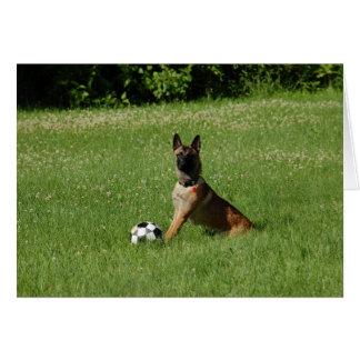 Soccer Malinois Card