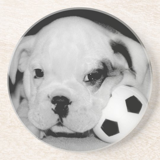 """Soccer Puppy"" English Bulldog Coaster"