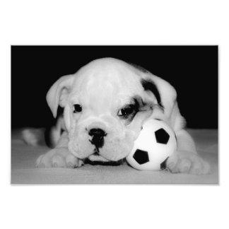 """Soccer Puppy"" English Bulldog Photo Print"