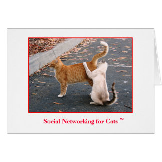 Social Networking for Cats Blank inside Card
