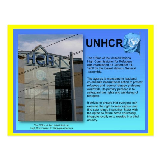 Social Studies, UNHCR, Geneva Postcard
