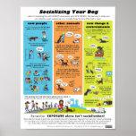 Socialisation de votre chien poster