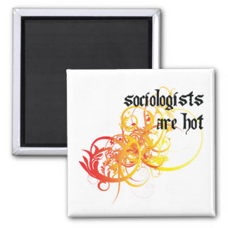 Sociologists Are Hot Magnet