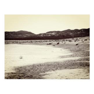 Soda Lake Carrizo Plain California Postcard