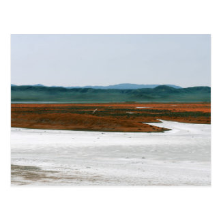 Soda Lake, Carrizo Plain National Monument CA Postcard