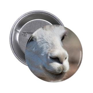 Soft Alpaca Nose Pinback Buttons