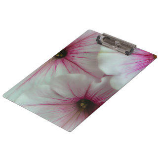Soft and delicate Pink Petunias Clipboards