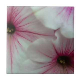 Soft and delicate Pink Petunias Tile