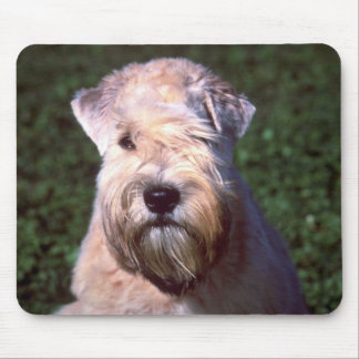 Soft-coated Wheaten Terrier Mouse Pad
