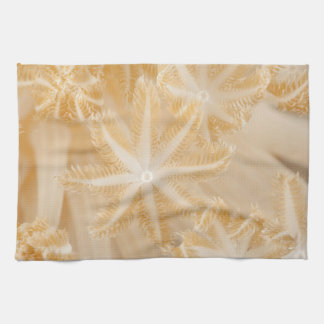 Soft Coral Polyps Kitchen Towel