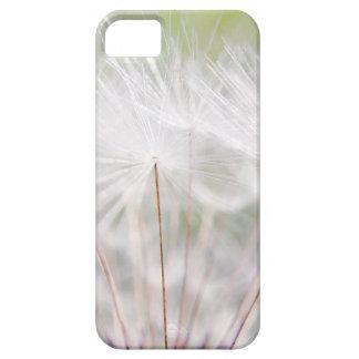 Soft Dandelion iPhone 5 Case